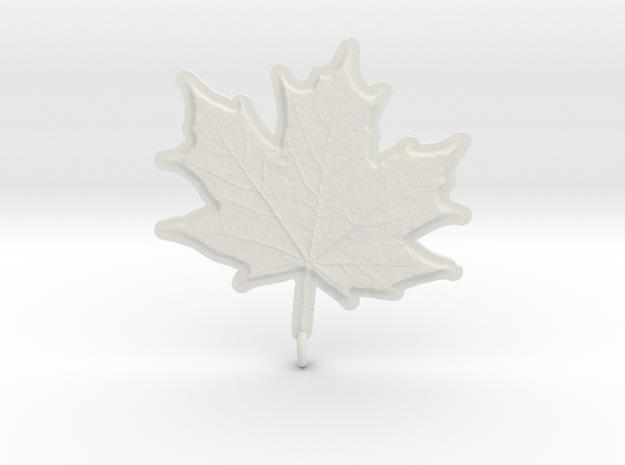 Maple Leaf Rock in White Natural Versatile Plastic
