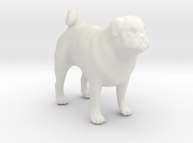 1/22 Pug Standing