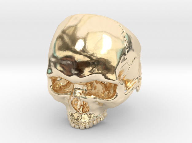 Mammoth Skull Ring Without Jaw in 14K Yellow Gold: 9 / 59