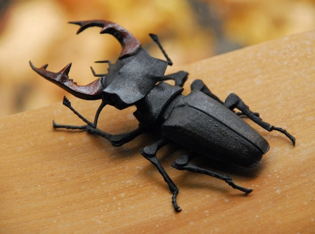 Articulated Stag Beetle (Lucanus cervus) in White Strong & Flexible