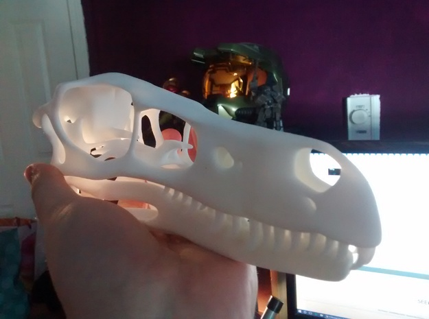1:1 Velociraptor mongoliensis Skull and Jaw in White Natural Versatile Plastic