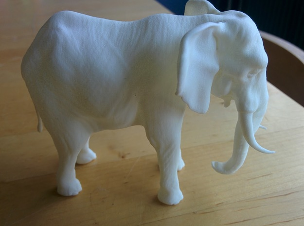 Elephant in White Strong & Flexible Polished
