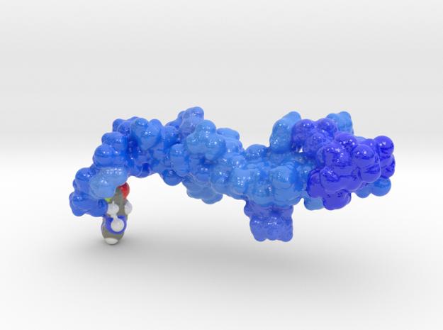 Glucagon Like Factor-1 (GLP-1) in Coated Full Color Sandstone