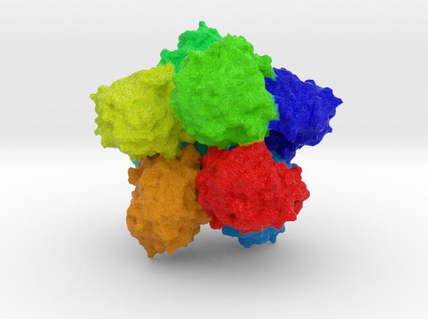 Glucosidase in Full Color Sandstone