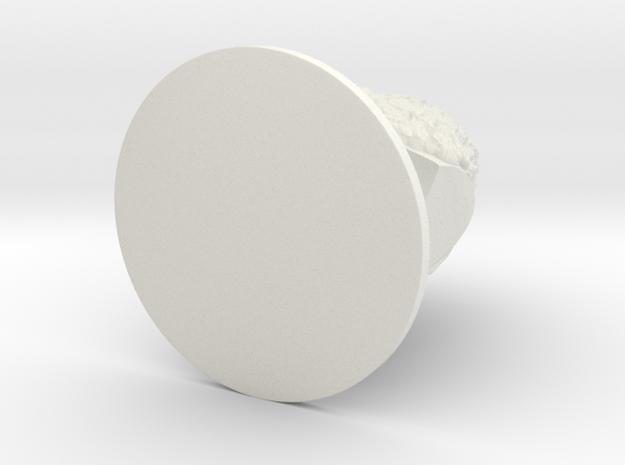 Stallprint7in in White Natural Versatile Plastic