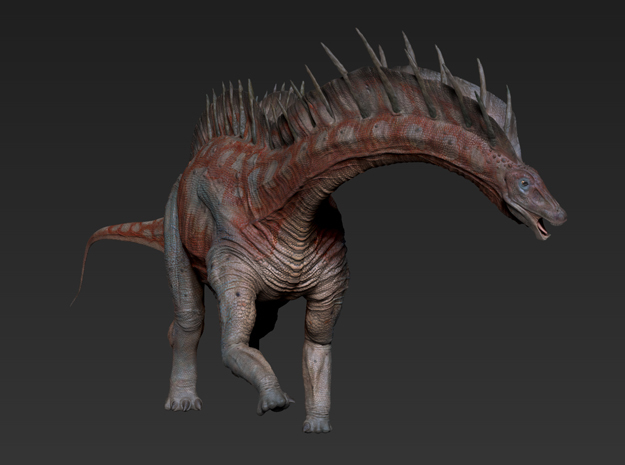 Amargasaurus (Medium/Large size)
