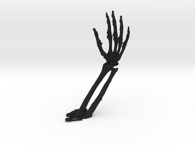 model of wrist