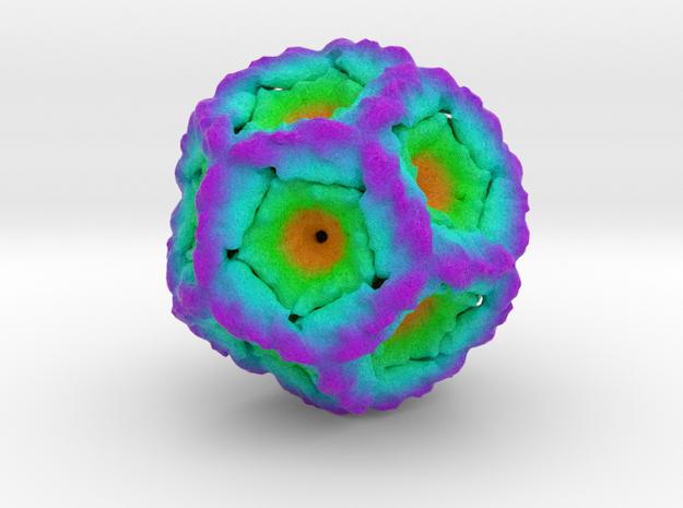 Bacteriophage Φ6 in Full Color Sandstone