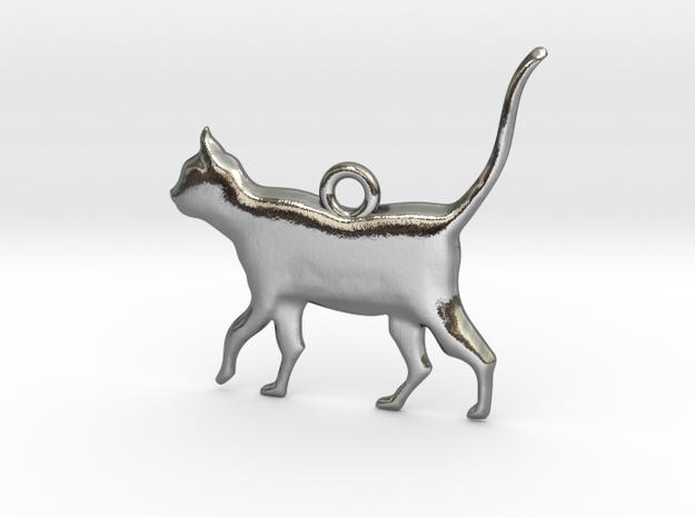 Schrödinger's Cat Pendant in Polished Silver