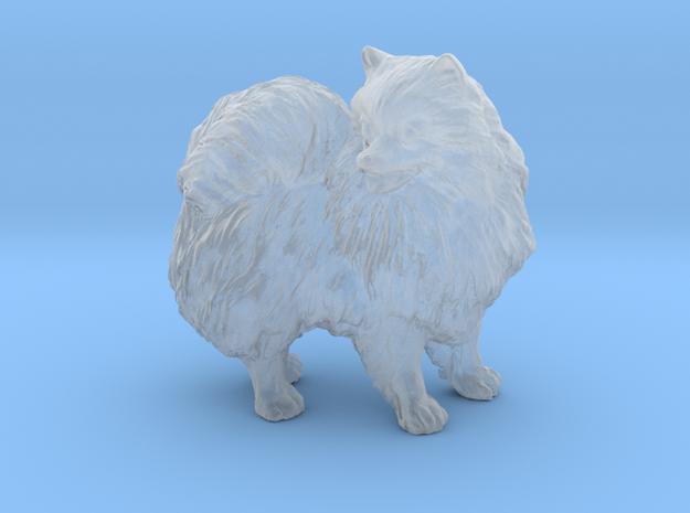 Custom Pomeranian Dog