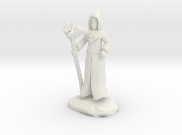 Dragon Cultist with Staff in White Natural Versatile Plastic