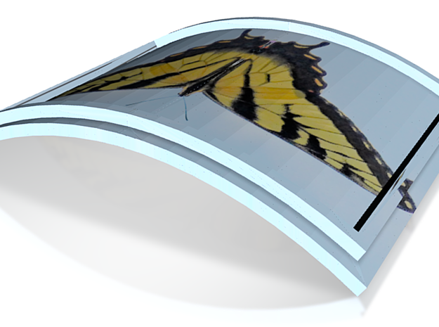 Butterfly Box, curved lid only 4in 3d printed