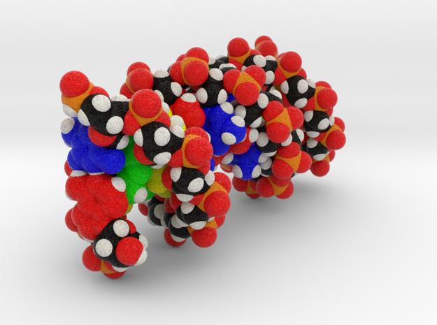 DNA in Full Color Sandstone: Small