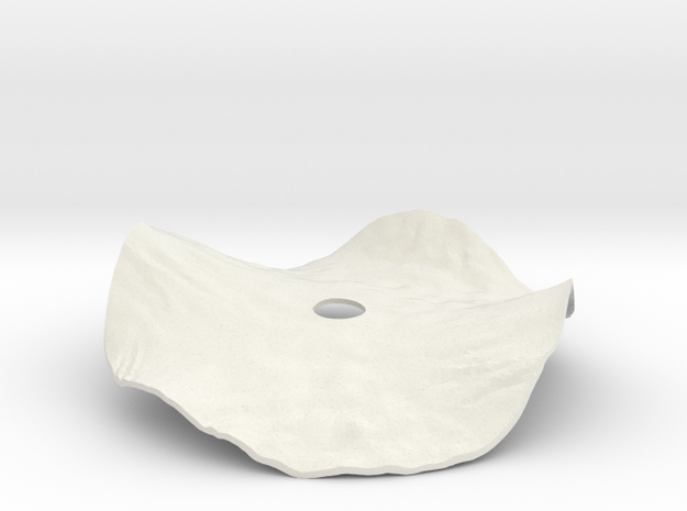 Helianthus Cover Lid in White Natural Versatile Plastic