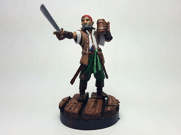 Half Elf Pirate in Black Hi-Def Acrylate
