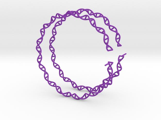 "Double Helix 75 mm (3"") Hoops - curly in Purple Processed Versatile Plastic"