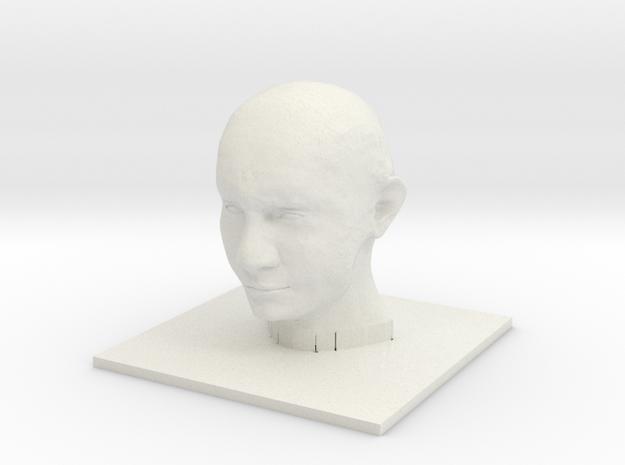 Vladimir Putin in White Natural Versatile Plastic