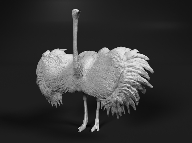Ostrich 1:25 Wings Spread in White Strong & Flexible