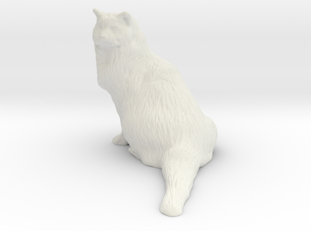 Birman Cat 001 - 250mm in White Natural Versatile Plastic