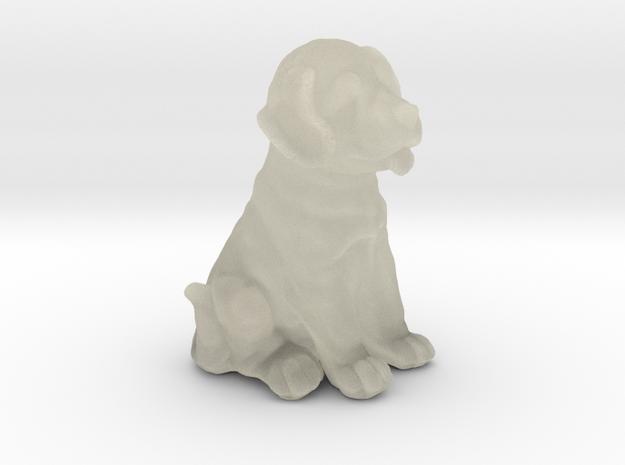 URNS Labrador Puppy 1mm