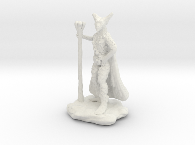 Xeno Borellis, Wilden Druid with Staff and Cloak in White Natural Versatile Plastic