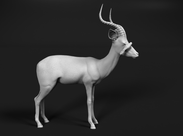 Impala 1:20 Male with Red-Billed Oxpecker in White Strong & Flexible