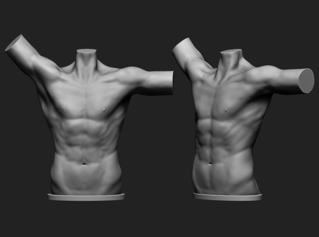 Male torso in White Strong & Flexible