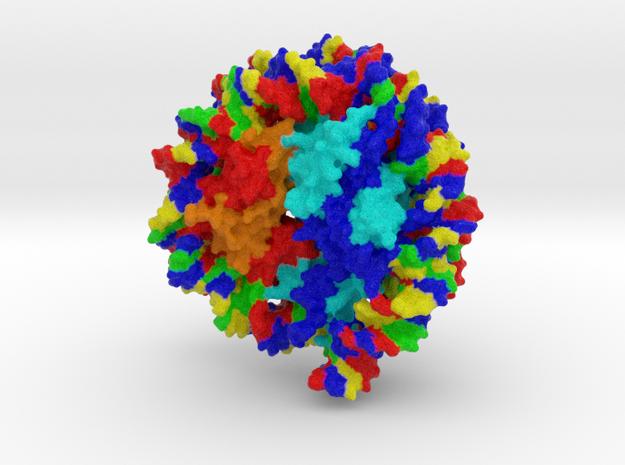 Drosophila Nucleosome in Full Color Sandstone
