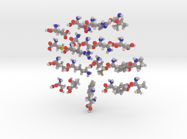 20 Natural Amino Acids (Set) in Full Color Sandstone