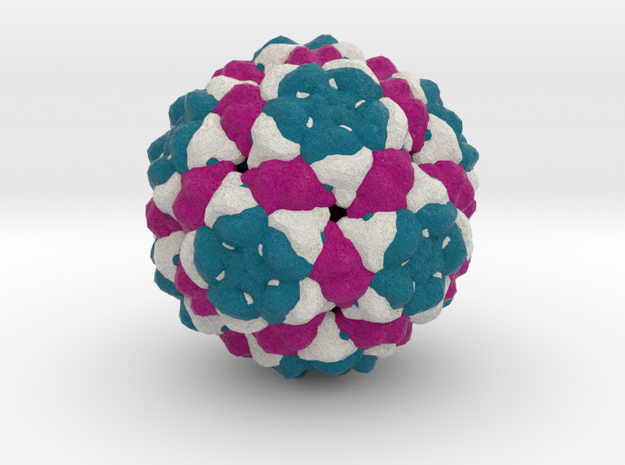 Bacteriophage Qβ in Full Color Sandstone