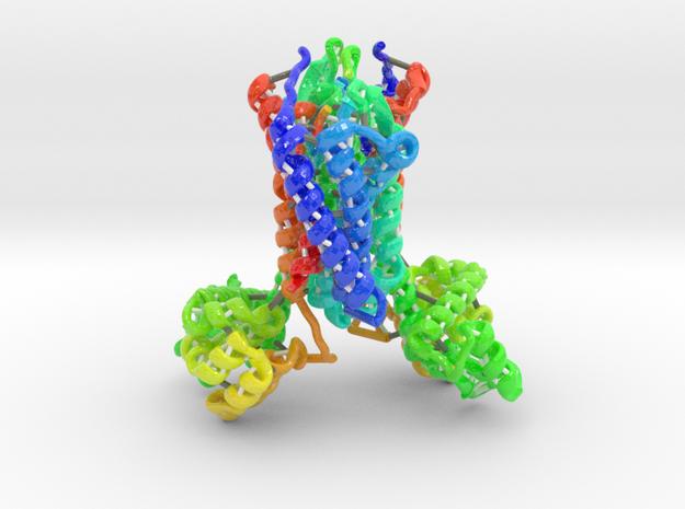 Chemokine Receptor in Glossy Full Color Sandstone