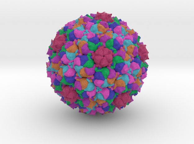 Staphylococcus Phage 80α in Full Color Sandstone