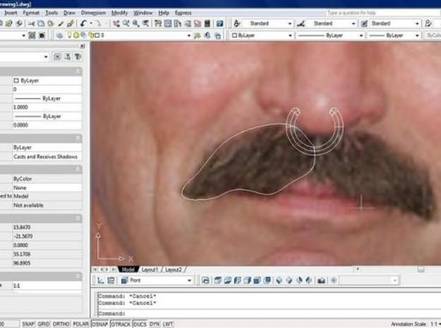 Tom Selleck's mustache 3d printed Description