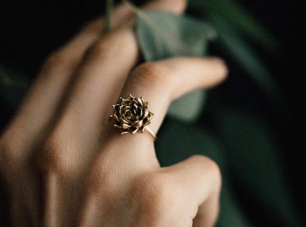Succulent Stacking Ring No. 5 in Natural Brass: 8 / 56.75