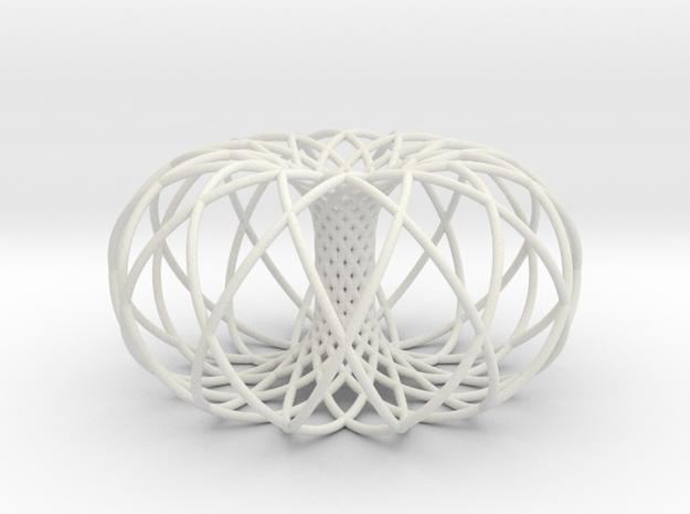 Torus of 2 sets of 12 circles in White Natural Versatile Plastic