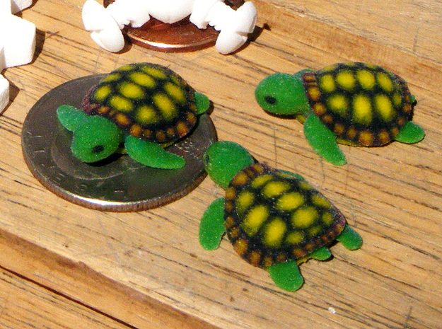 Little Turtle (3 pieces bundle)