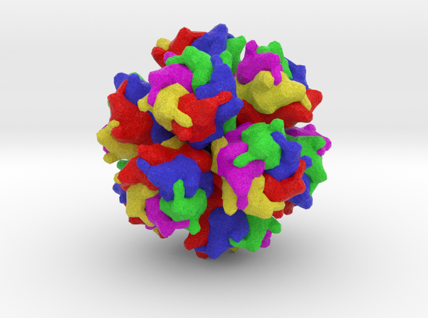 Adenovirus Serotype 2 in Full Color Sandstone