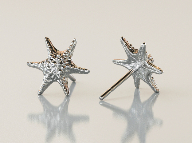 Sea Star Earrings in Polished Silver
