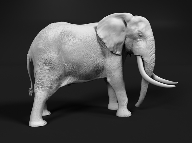 African Bush Elephant 1:120 Tusker Bull Dzombo in Smooth Fine Detail Plastic