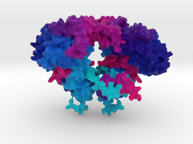 Hermes DNA Transposase in Full Color Sandstone