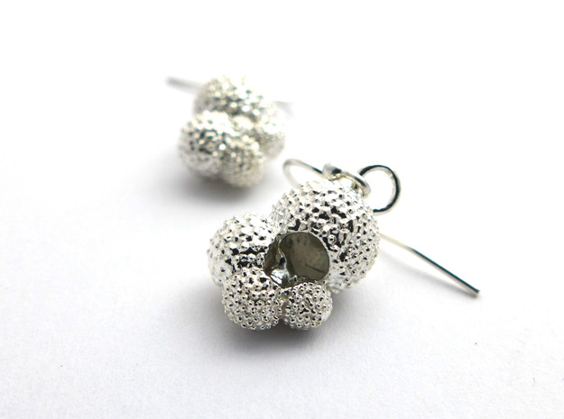 Globigerina Earrings in Natural Silver