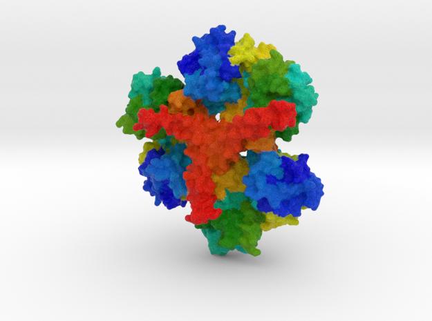 Huntingtin Protein in Natural Full Color Sandstone
