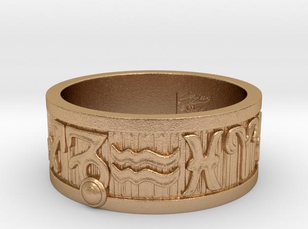 Zodiac Sign Ring Capricorn / 21.5mm in Natural Bronze