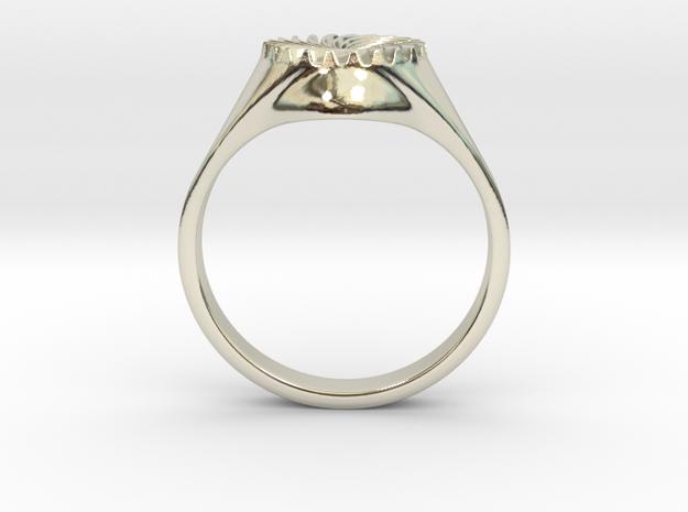 Women's Spiral Ring #1 in 14k White Gold