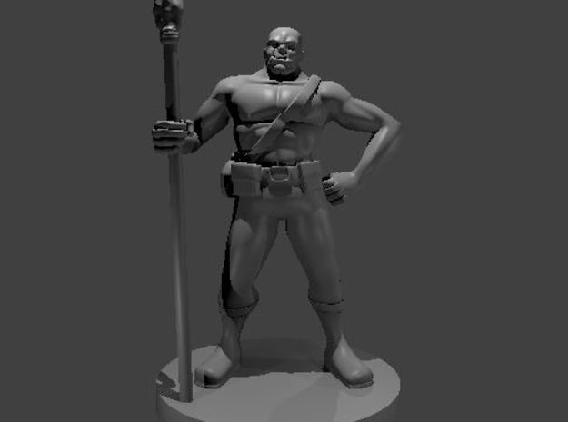 Half Orc Druid in Smooth Fine Detail Plastic
