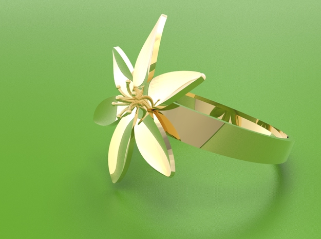 Lily  in Polished Brass: 8 / 56.75