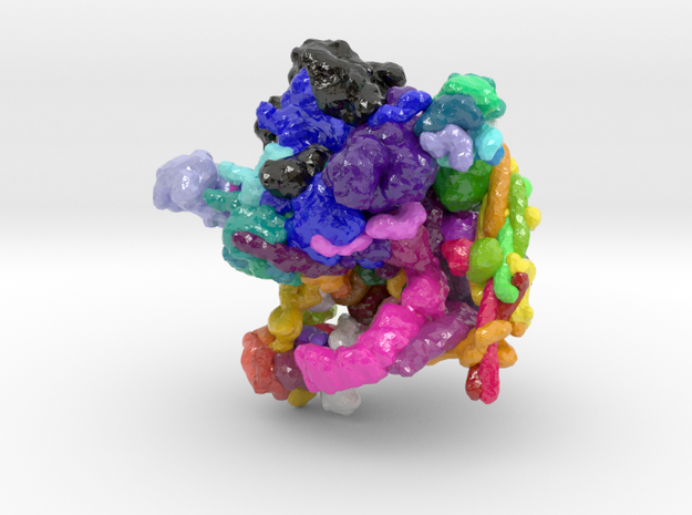 Spliceosome (Large) in Glossy Full Color Sandstone: Large