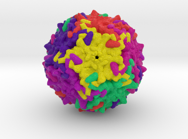 Parvovirus B19 in Natural Full Color Sandstone