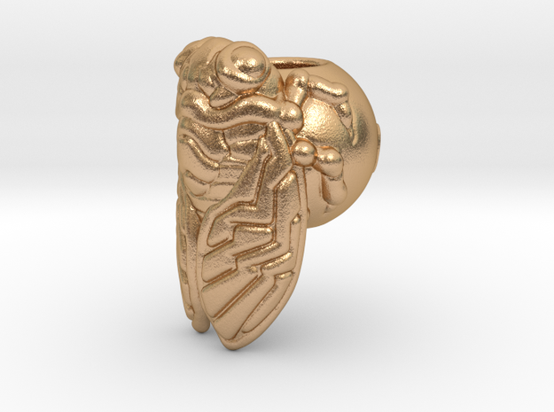 Cicada_14mm in Natural Bronze