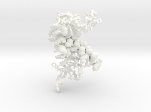Lipoprotein signal peptidase II in White Processed Versatile Plastic